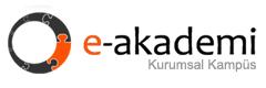 E-Akademi